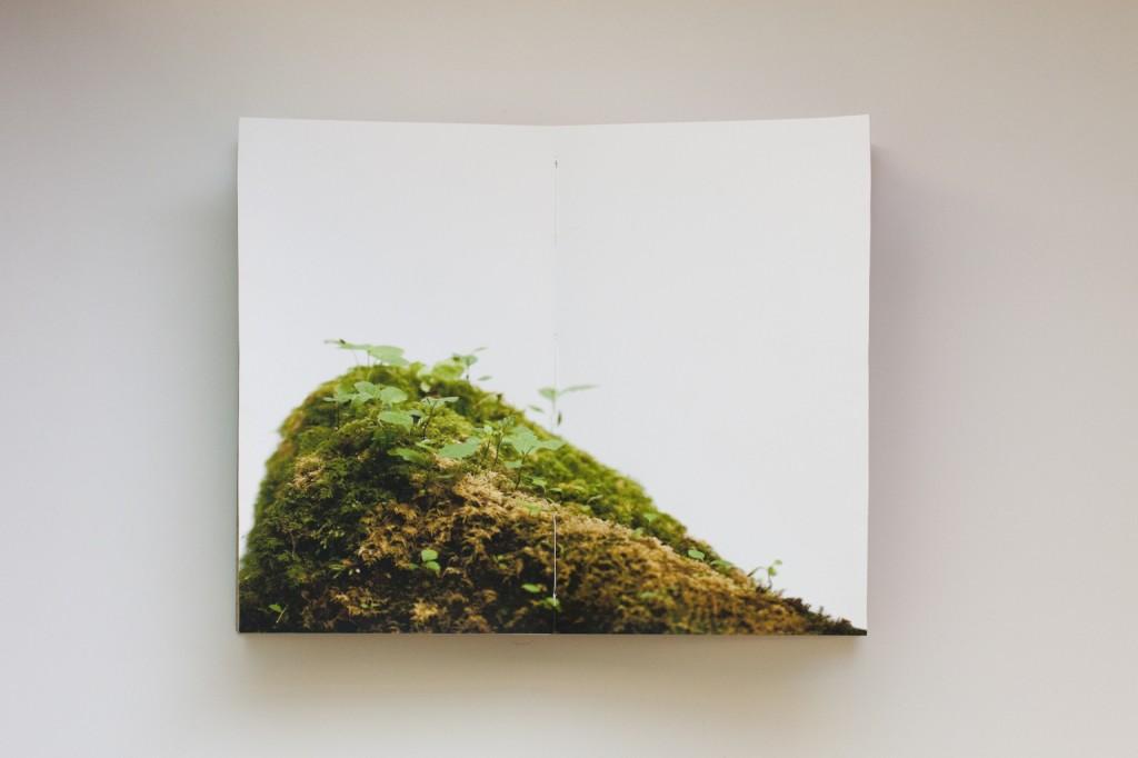 Kaitlin-Sullivan_MG_1797crop